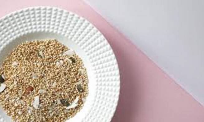 cardamom-extract-powder