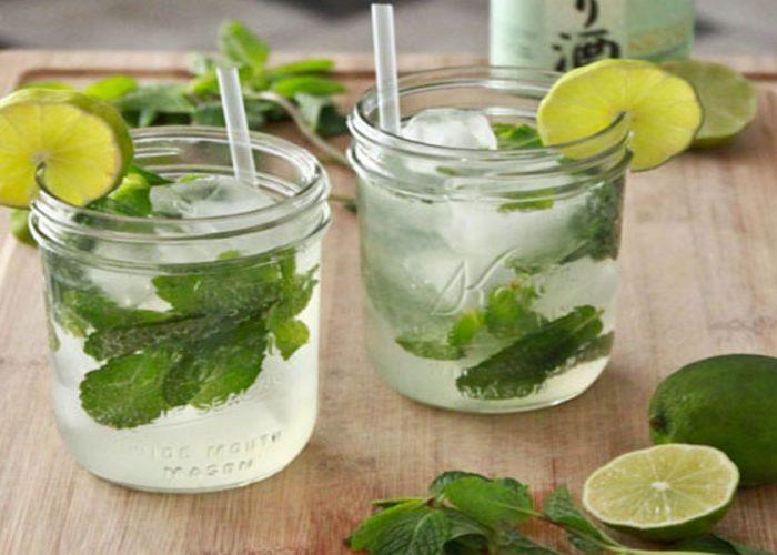 instant-mojito-drink
